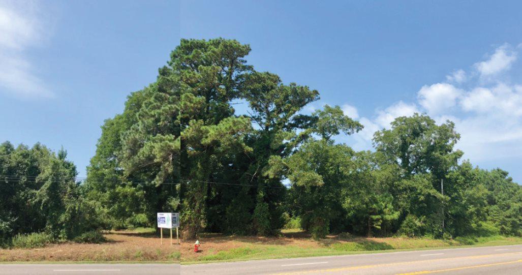 8934 Caratoke Highway - Photo 1