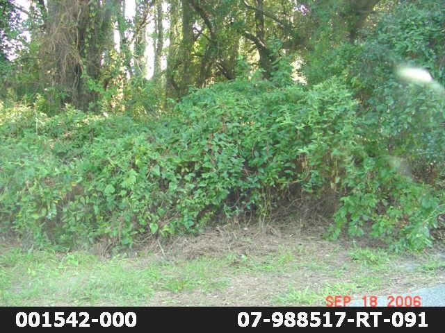601 W Sportsman Drive Lot 180, Kill Devil Hills, NC 27948 (MLS #102060) :: Surf or Sound Realty