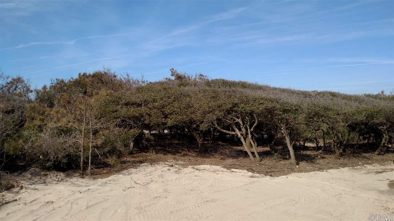 2330 Sandfiddler Road - Photo 1