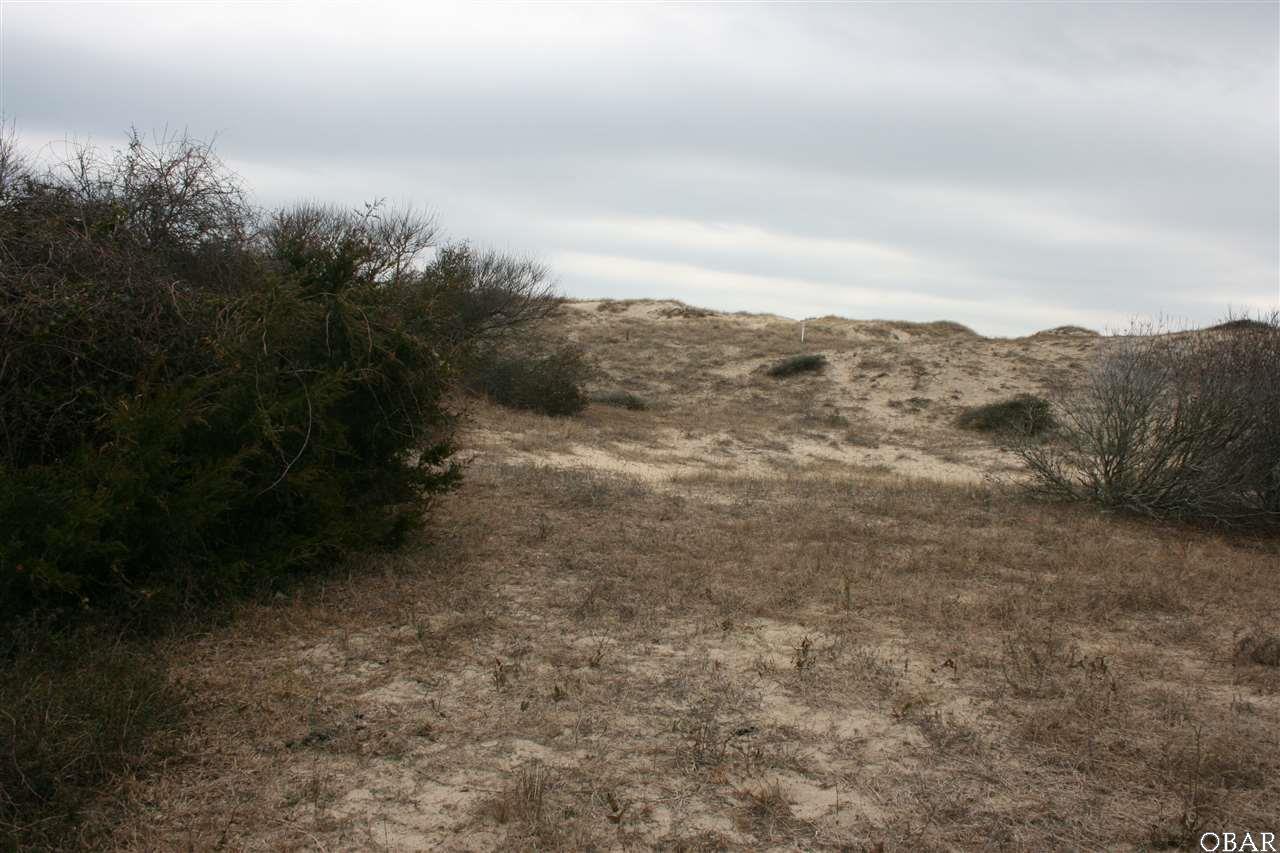 2117 Sandfiddler Road - Photo 1