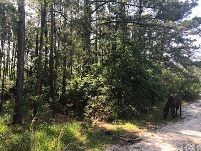 2377 Ocean Pearl Road Lot 14, Corolla, NC 27927 (MLS #105272) :: Corolla Real Estate | Keller Williams Outer Banks