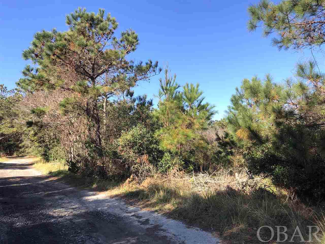 0 Piney Ridge Road - Photo 1