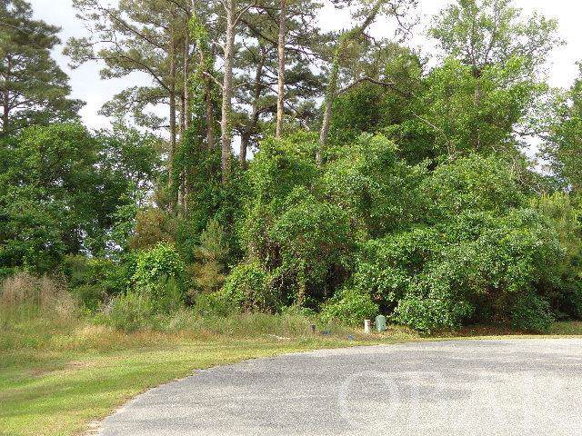 1288 Lost Lake Lane Lot 246, Corolla, NC 27927 (MLS #107875) :: Outer Banks Realty Group