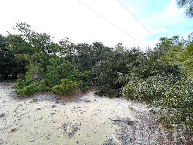 2364 Carova Road Lot 6, Corolla, NC 27927 (MLS #113144) :: Outer Banks Realty Group