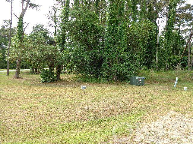 1282 Lost Lake Lane Lot 249, Corolla, NC 27927 (MLS #113886) :: Corolla Real Estate | Keller Williams Outer Banks