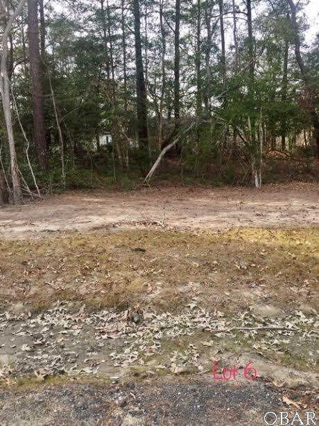0 Etheridge Acres Lane Lot 6, Manteo, NC 27954 (MLS #95118) :: Surf or Sound Realty