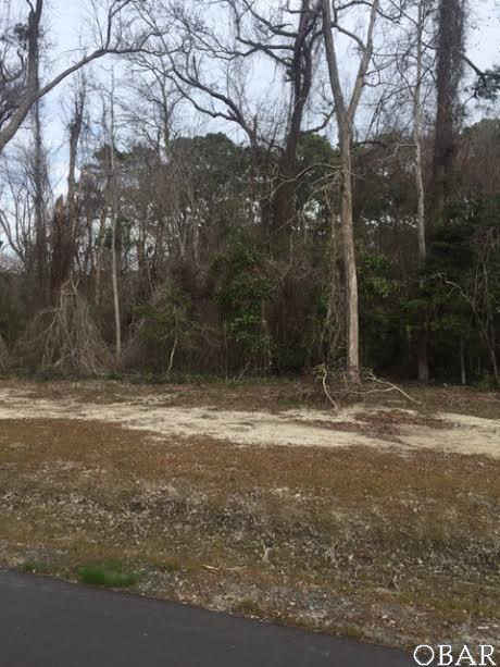 0 Etheridge Acres Lane Lot 3, Manteo, NC 27954 (MLS #95133) :: Surf or Sound Realty