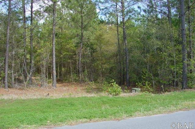 141 Tuscarora Ct Lot #25, Manteo, NC 27954 (MLS #99955) :: Matt Myatt | Keller Williams