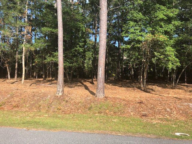 122 Madeline Drive Lot, Manteo, NC 27954 (MLS #101285) :: Outer Banks Realty Group