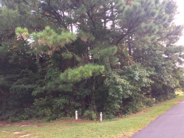 141 Roanoke Trail Lot 8, Manteo, NC 27954 (MLS #101879) :: Hatteras Realty