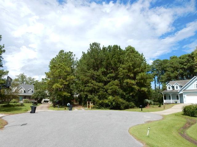 115 Alder Branch Lane Lot 6, Manteo, NC 27954 (MLS #101968) :: Surf or Sound Realty