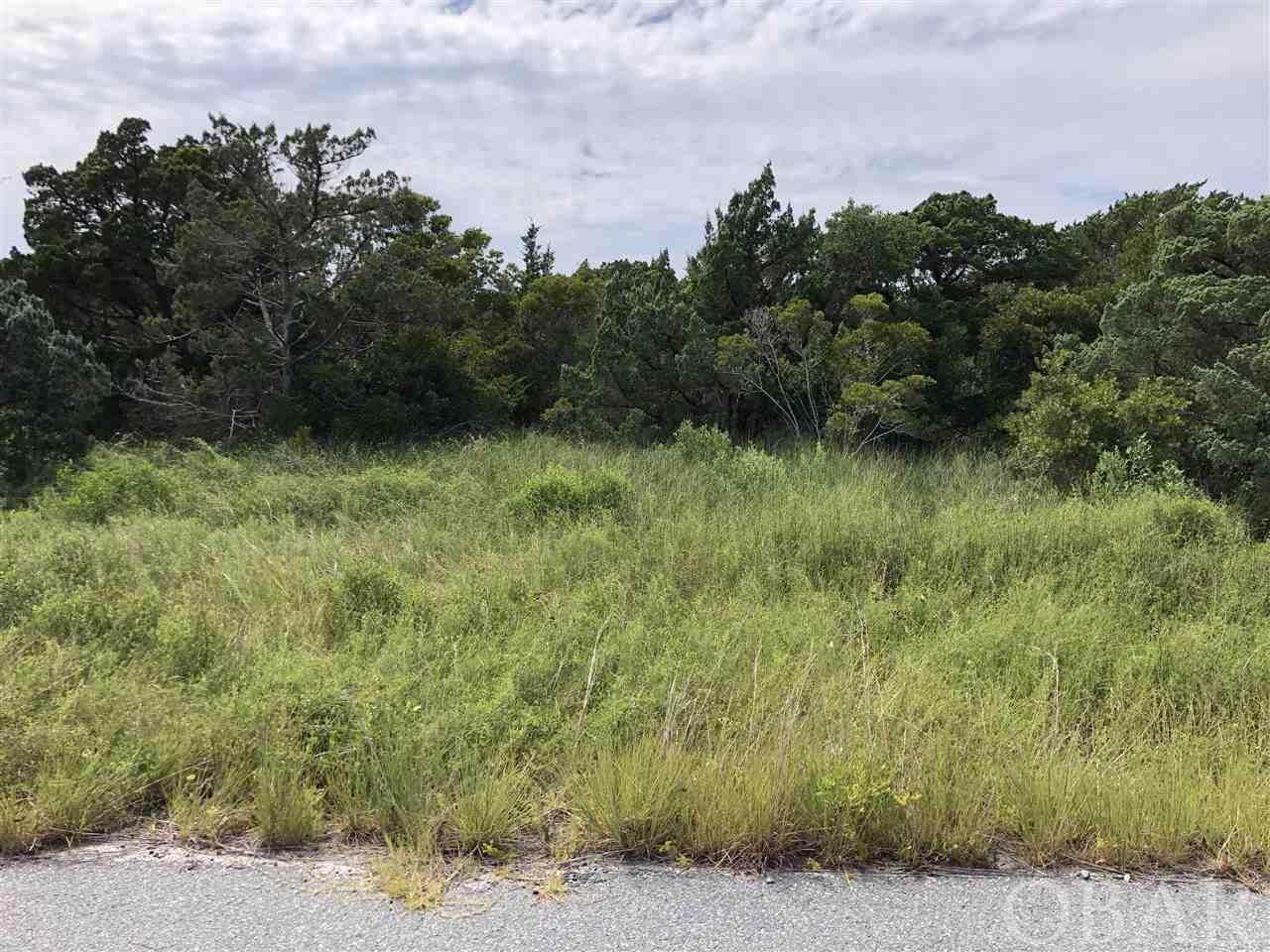 42165 Askins Creek Drive - Photo 1