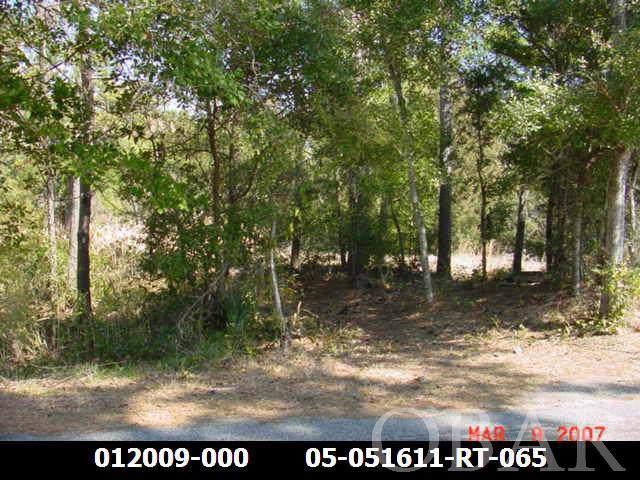 52163 Timber Trail Lot 5, Frisco, NC 27936 (MLS #106656) :: Midgett Realty