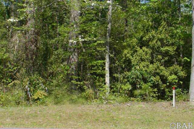 111 Walter Court Lot 7, Manteo, NC 27954 (MLS #71109) :: Hatteras Realty
