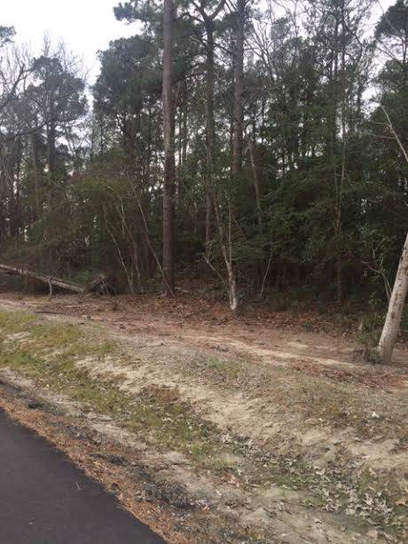 121 Etheridge Acres Lane Lot 7, Manteo, NC 27954 (MLS #95119) :: Sun Realty