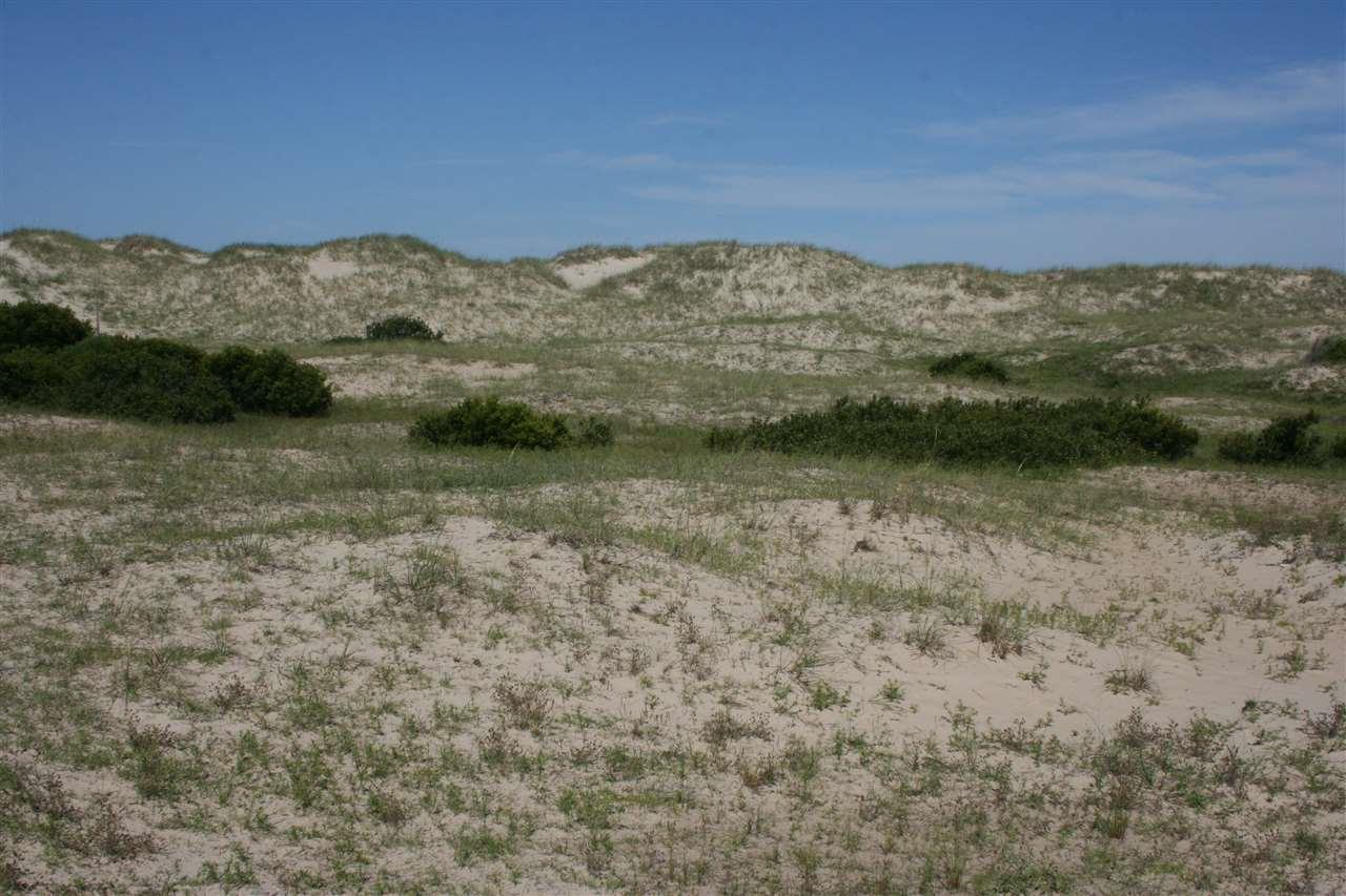 2029 Sandfiddler Road - Photo 1