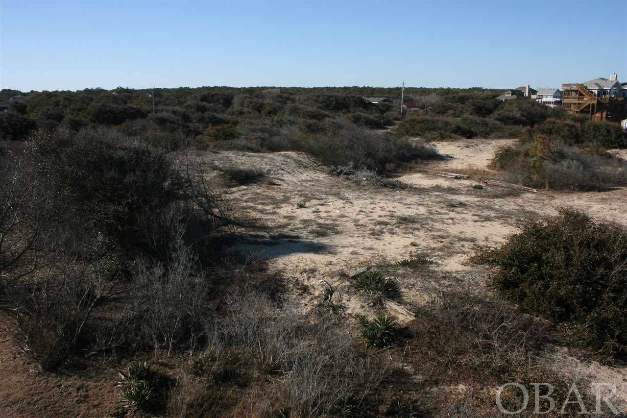 2234 Sandfiddler Road - Photo 1