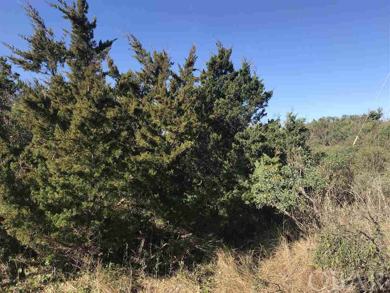54177 Osprey Way - Photo 1
