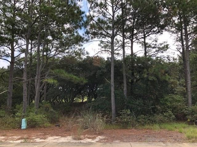 759 Grouse Court Lot 359, Corolla, NC 27927 (MLS #102324) :: Midgett Realty