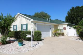 1420 Azteca Loop, The Villages, FL 32162 (MLS #518273) :: Realty Executives Mid Florida