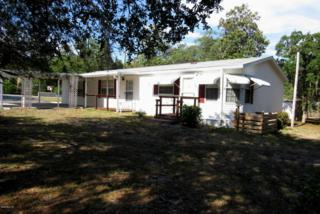 18540 SE 21st Street, Silver Springs, FL 34488 (MLS #518464) :: Realty Executives Mid Florida