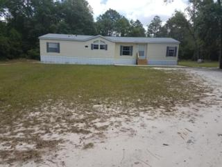 11204 E Hwy 25, Belleview, FL 34420 (MLS #518544) :: Realty Executives Mid Florida