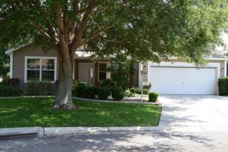 9490 SE 176th Saffold Street, The Villages, FL 32162 (MLS #518603) :: Realty Executives Mid Florida