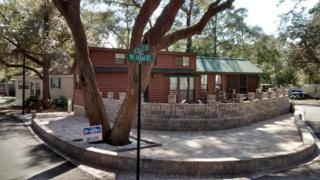 25232 NE 142 Street, Salt Springs, FL 32134 (MLS #518827) :: Realty Executives Mid Florida