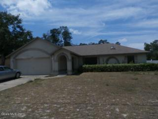 15670 SW 23rd Ave Road, Ocala, FL 34473 (MLS #518876) :: Realty Executives Mid Florida