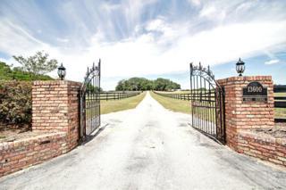 13600 N Us Hwy 301, Citra, FL 32113 (MLS #518912) :: Realty Executives Mid Florida