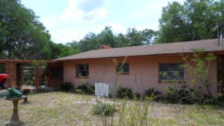 21328 NE 150 Street, Salt Springs, FL 32134 (MLS #518926) :: Realty Executives Mid Florida