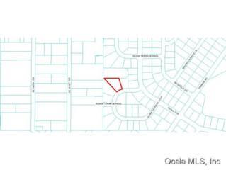 0 SE Guava Terrace Loop, Ocklawaha, FL 32179 (MLS #518935) :: Realty Executives Mid Florida