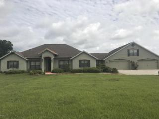 4191 SE 117th Place, Belleview, FL 34420 (MLS #518946) :: Realty Executives Mid Florida