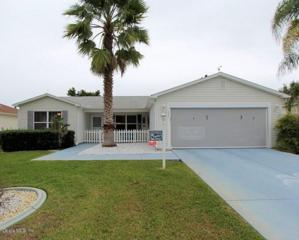 3325 Shelby Street, The Villages, FL 32162 (MLS #518958) :: Realty Executives Mid Florida