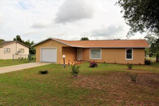 59 Cedar Road, Ocala, FL 34472 (MLS #518959) :: Realty Executives Mid Florida