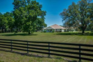 3451 SE 186 Avenue, Morriston, FL 32668 (MLS #518996) :: Realty Executives Mid Florida