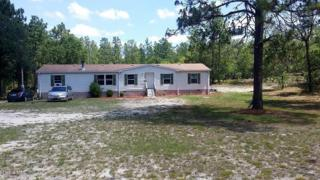 22233 SW Edgewater Boulevard, Dunnellon, FL 34431 (MLS #519005) :: Realty Executives Mid Florida