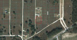 0 SW 149th Terrace, Ocala, FL 34482 (MLS #519008) :: Realty Executives Mid Florida