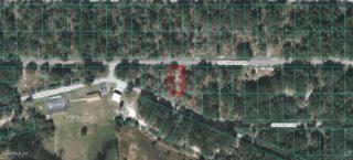 Lot 16 SW Sailboat Dr, Dunnellon, FL 34431 (MLS #519043) :: Realty Executives Mid Florida