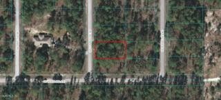 Lot 33 SW Commodore Rd, Dunnellon, FL 34431 (MLS #519046) :: Realty Executives Mid Florida