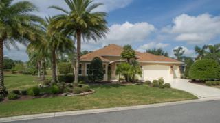 1154 Noble Way, The Villages, FL 32162 (MLS #519051) :: Realty Executives Mid Florida