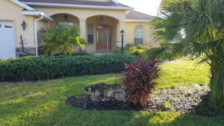 8545 SW 86th Terrace, Ocala, FL 34481 (MLS #519053) :: Realty Executives Mid Florida