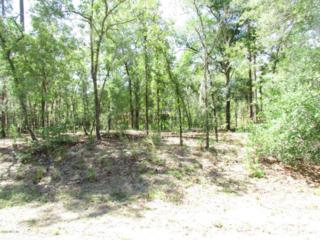 000 SW 185th Avenue Road, Dunnellon, FL 34432 (MLS #519065) :: Realty Executives Mid Florida