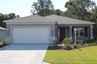 7771 SW 80th Place Road, Ocala, FL 34476 (MLS #519083) :: Realty Executives Mid Florida