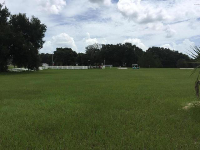 0 SE 159TH Terrace, Weirsdale, FL 32195 (MLS #505221) :: Thomas Group Realty