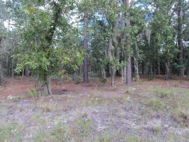 00 SW 69 Loop #11, Dunnellon, FL 34432 (MLS #506955) :: Realty Executives Mid Florida