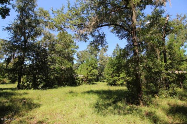 14821 NW 186TH Street, Williston, FL 32696 (MLS #507127) :: Bosshardt Realty