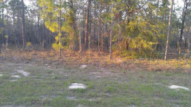 121 SW Terr, Dunnellon, FL 34432 (MLS #515079) :: Realty Executives Mid Florida