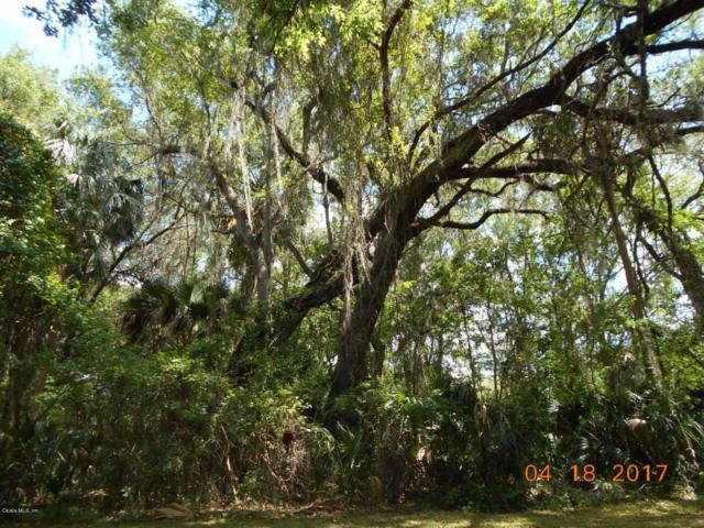 0 NE 160th Place, Citra, FL 32113 (MLS #517262) :: Realty Executives Mid Florida
