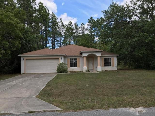 6945 SW 132 Place, Ocala, FL 34473 (MLS #518531) :: Realty Executives Mid Florida